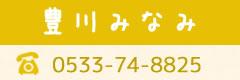 豊川みなみ0533-75-6456